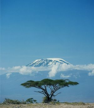 Le mont Kilimanjaro enneigé - Photo Pinterest